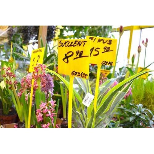 Tabliczka cenowa do kwiatów